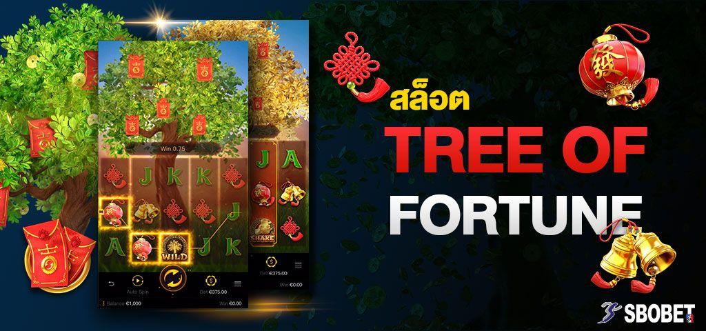 สล็อต TREE OF FORTUNE เกมสล็อตต้นไม้แห่งความเจริญก้าวหน้า SBOBET